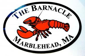 zwergalarm-barnacle-marblehead