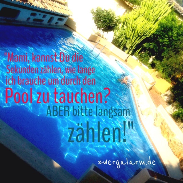 zwergalarm-pool