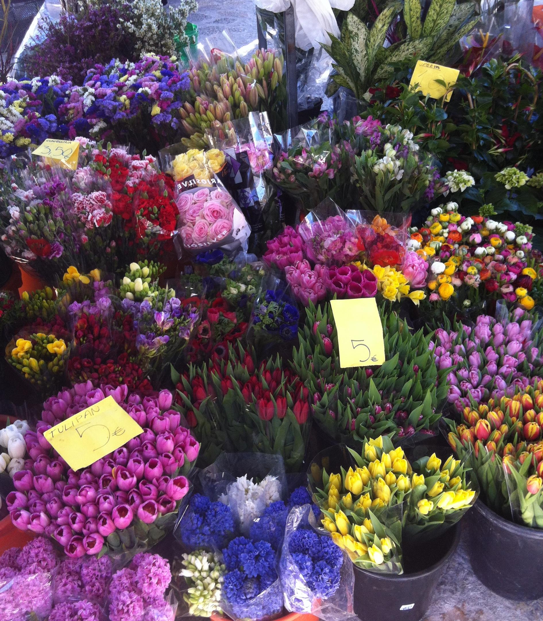 PMI_spring.1